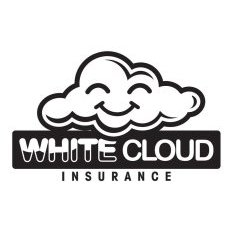 White Cloud Insurance doral chamber member