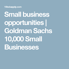 Small business opportunities/Goldman Sachs 10,000 Small Businesses